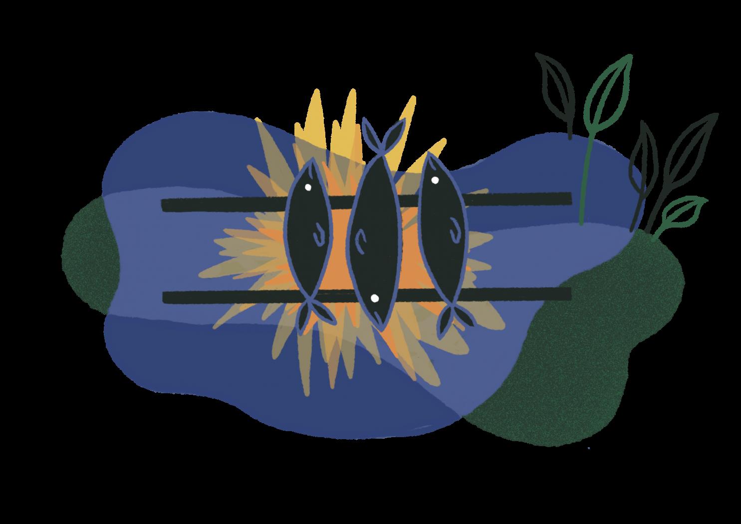 Char-grilling fish